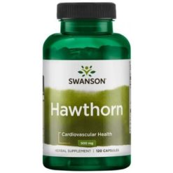 Swanson - Hawthorn Extract, 500mg - 120 caps